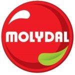 Logo - Molydal